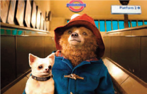 PADDINGTON 2 @ Rutland County Museum | England | United Kingdom