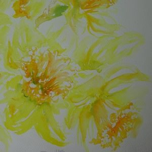Watercolour Painting: Daffodil doodles @ Barnsdale Gardens